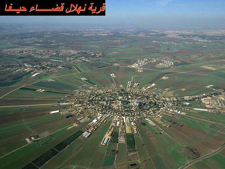 بلادي فلسطين